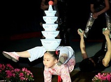 Beijing Acrobatics Night Show Tour – $30