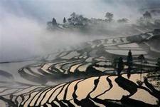 Yuanyang Yunnan