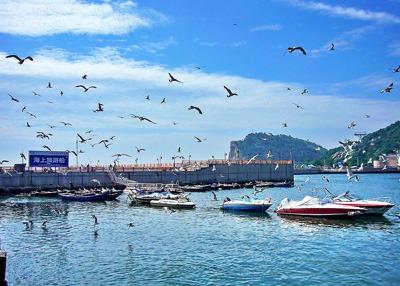 Beautiful Dalian City