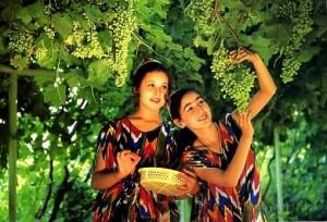 Grape Valley, Xinjiang