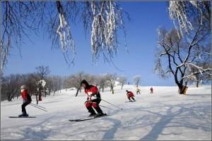 Ski in Harbin