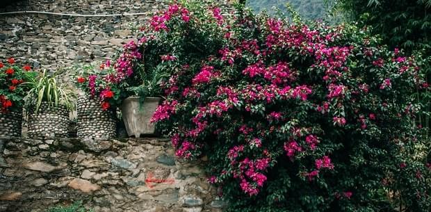 yunnan trekking