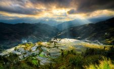 yuanyang rice field